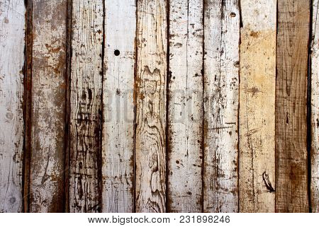 Texture of ancient wood with cracked white of red color