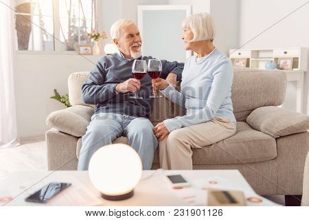 Romantic Evening. Pleasant Elderly Couple Sitting On The Couch And Drinking Wine During The Celebrat