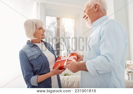 Happy Birthday. Pleasant Elderly Woman Giving Her Husband A Beautifully Wrapped Birthday Present Whi