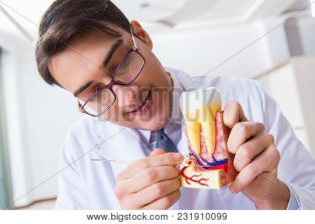 Dentist in medical concept in hospital