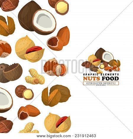 Nuts And Seeds Cover. Flat Style. Nut Food Of Cashew And Brazil, Hazelnut And Almonds.