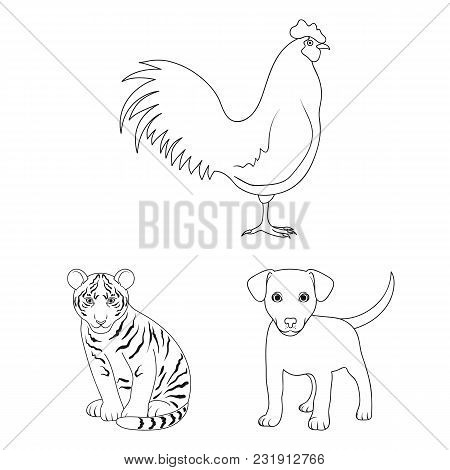 Realistic Animals Outline Icons In Set Collection For Design. Wild And Domestic Animals Vector Symbo