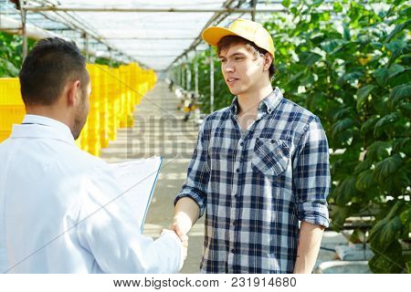 Young hothouse farmer shaking hand of agroengineer before or after meeting