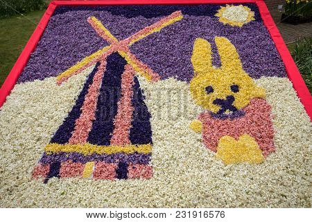 Noordwijkerhout, Netherlands - April 21,  2017: Traditional Windmill And Easter Rabbit Made Of Hyaci