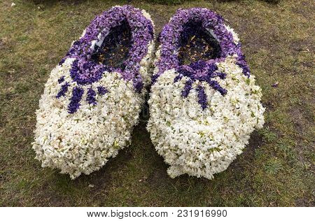 Traditional Clogs Made Of Hyacinths At The Traditional Flowers Parade Bloemencorso From Noordwijk To