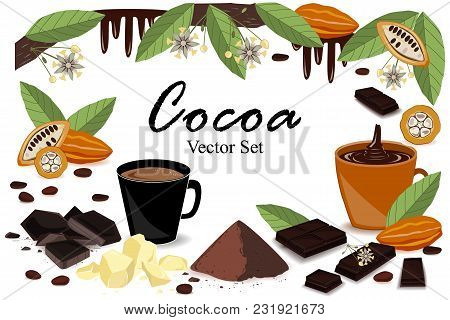 Cute Frame Banner With Super Food Cocoa Collection. Pod, Beans, Cocoa Butter, Cocoa Liquor, Chocolat