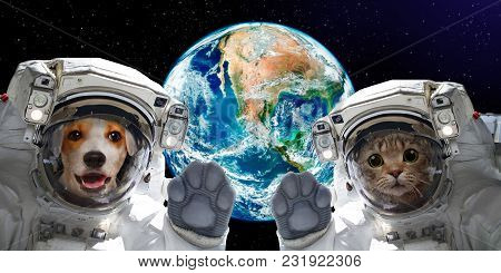 Cat And Dog Astronauts On The Background Of The Globe. Elements Of This Image Furnished By Nasa.
