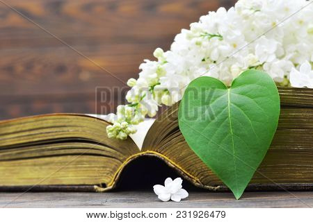 Mothers Day Card With Lilac Flower And Book