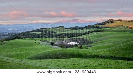 Sunset Over Rolling Grassy Hills And Mount Diablo In Northern California. Views From Briones Regiona