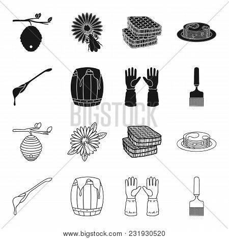 A Spoon Of Honey, Protective Gloves, A Barrel Of Honey, A Fork.apiary Set Collection Icons In Black,