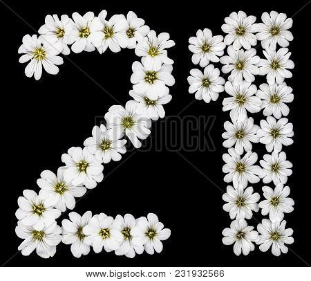 Arabic Numeral 21, Twenty One, Twenty, Two, One, From White Flowers Of Cerastium Tomentosum, Isolate