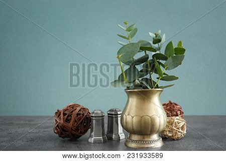 Plant, salt and pepper shakers on table