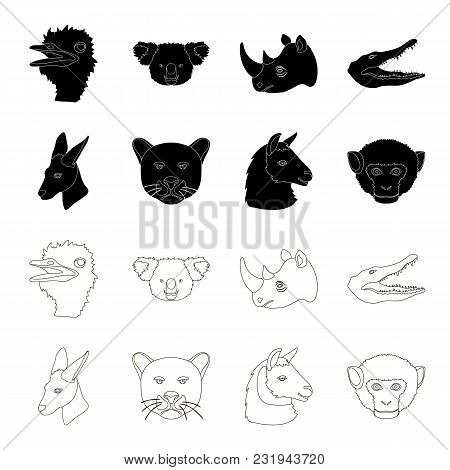 Kangaroos, Llama, Monkey, Panther, Realistic Animals Set Collection Icons In Black, Outline Style Ve