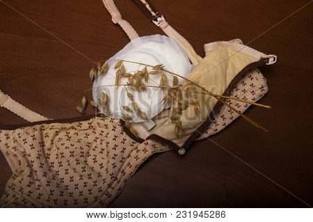 Nursing Bra For Mothers. Moms Bra With New Disposable Breast Pad. A Cream-colored Bra On A Wooden Br