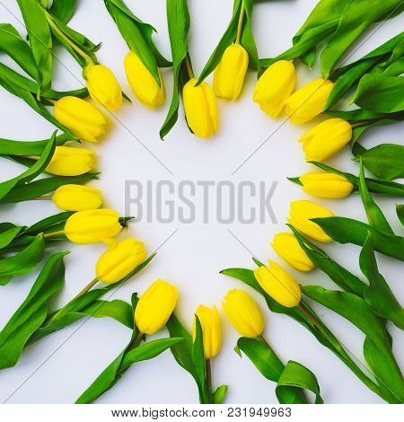 Tulips Overhead On White Background In Heart Shape. Copy Space