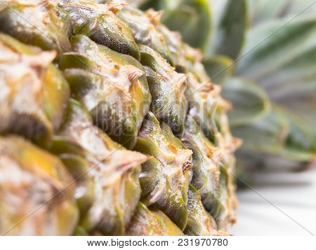 Close View Of The Pineapple Bark Horizontally, With Pesticide And Leaves In The Background.