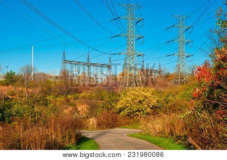 High Tension Power Lines Stretch Above A Walkway In A Nature Park