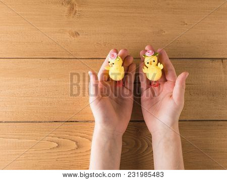 Two Small Toy Chicken In The Hands Of A Child On A Wooden Table. The Concept Of Animal Welfare.