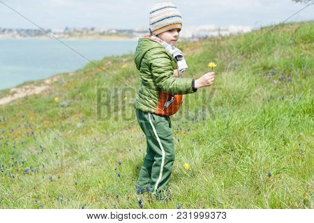 Cute Caucasian Little Kid In Warm Jacket And Hat And Scarf On Green Slope With Yellow Flower In His
