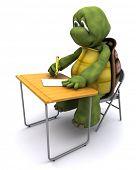 3D render of tortoise sat at school desk poster