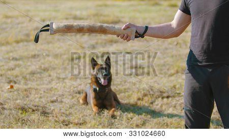 A Man Training His German Shepherd Dog - Incite The Dog On The Grip Bait