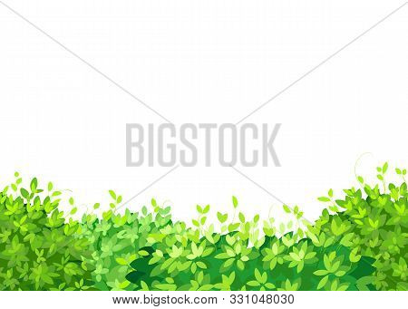 Seamless Green Plants, Green Bushes. Bush Leaves Background, Vector File Suitable For Website