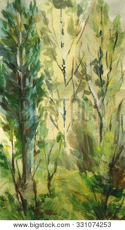 Abstract Landscape With Birch And Trees. Watercolor Illustration In Sketch Style