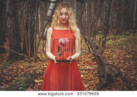 Young Pretty Woman In The Red Dress Is Walking In The Foggy Mystical Forest With Fallen Leaves