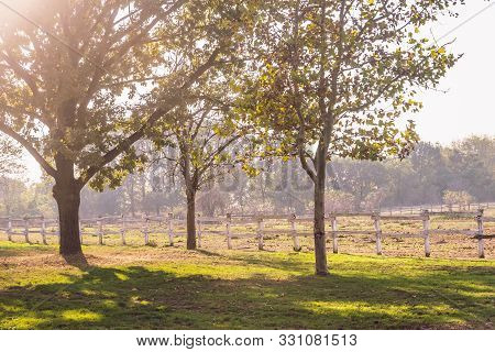 Countryside Landscape. Old Fence In Countryside Landscape. Sunny Day In Countryside Landscape. Lands