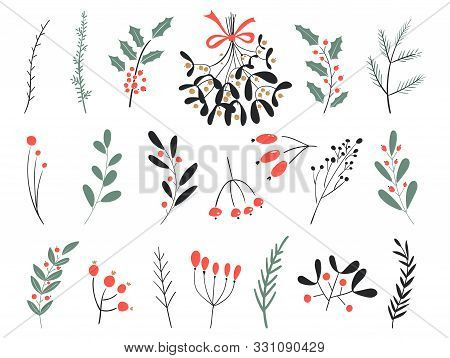 Hand Drawn Vector Winter Elements. Christmas Floral. Christmas Branches. Perfect For Invitations, Gr