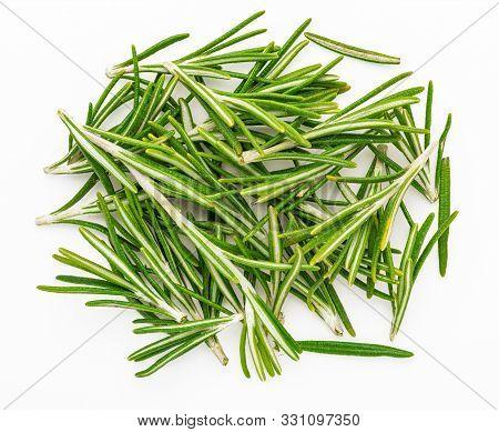 Freshly Cut Green Rosemary Leaves (rosmarinus Officinalis). Isolated On White Background Ingredient