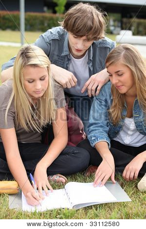 Three students working together in a park