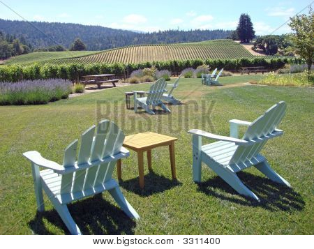 Attractive Vineyard In Northern California, With Chairs On The Lawn
