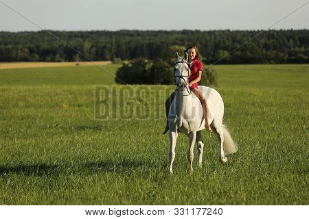 Young Girl On Roan Horse Walk On Meadow In Late Afternoon Without Saddle