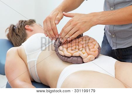 Manual therapy of internal organs in intestinal dysfunction with external model  -  concept