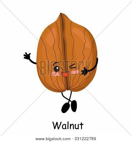 Walnut. Vector Illustration. Walnut Character Isolated On White Background..