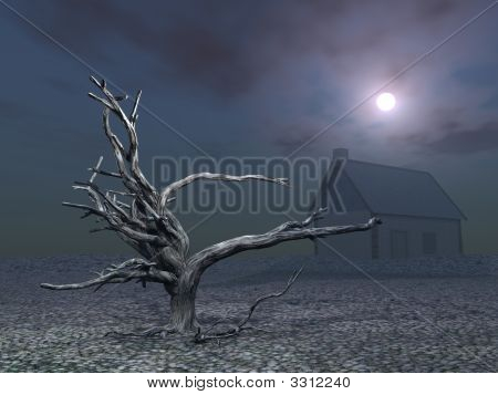 Dead Tree And House At Night