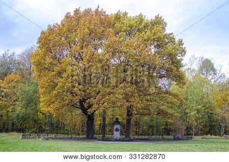 Monument To Russian Tsar Nicholas Ii Under A Yellow Autumn Oak