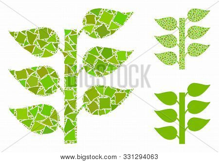 Flora Plant Mosaic Of Raggy Pieces In Variable Sizes And Color Hues, Based On Flora Plant Icon. Vect