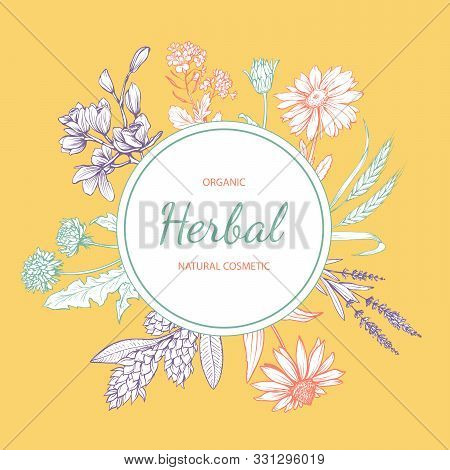 Natural Cosmetics Hand Drawn Vector Label. Eco Skincare Product With Herbal Ingredients Sticker Desi