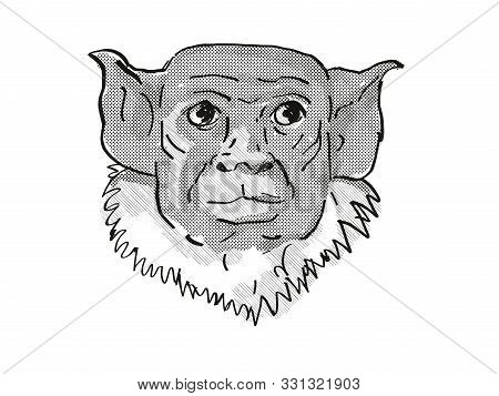 Retro Cartoon Style Drawing Of Head Of A Pied Tamarin, A Small Species Of Monkey In The Rainforest O