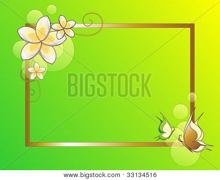 green and fresh spring frame