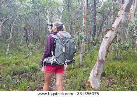 Woman In Bushland Forest Of Eucalyptus And Gum Trees Loioking Through Binoculars During A  Bushwalk
