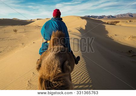 Nomad Riding Camel