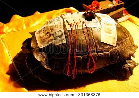 Chinese Banknotes, Chinese Yuan, Cny, Renminbi, Rmb On Turtle. Finance Concept.