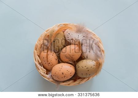 Easter Eggs With Feathers In Basket On Blau Background. Easter Concept.