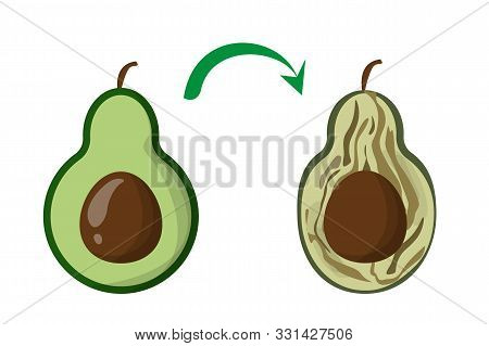 Rotten Vegetable Avocado Vector Isolated. Food Waste And Fly Above. Dirty, Bad And Unhealthy Fruit.