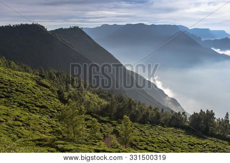 Munnar Landscape View Of South India Kerala
