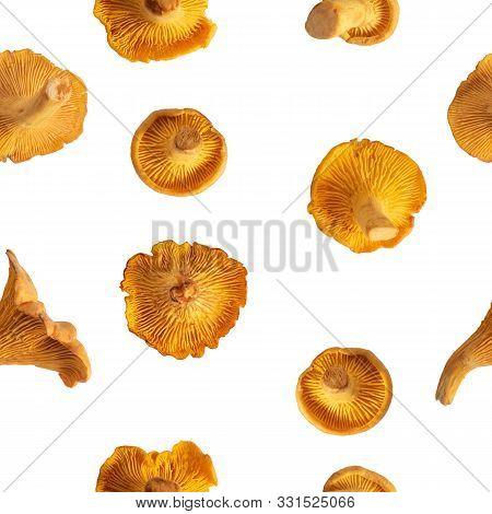 Chanterelle Mushrooms Seamless Pattern. A Set Of Eatable Mushrooms Background Tile