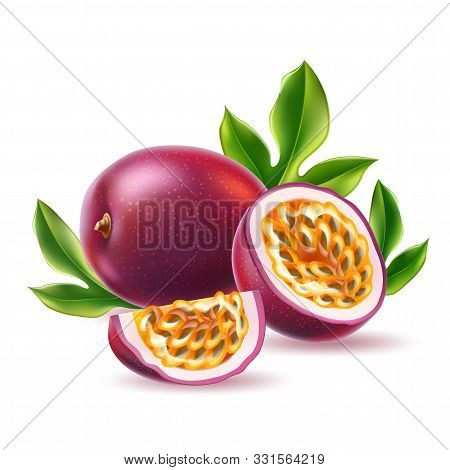 Vector Realistic Passionfruit With Seed Green Leaf